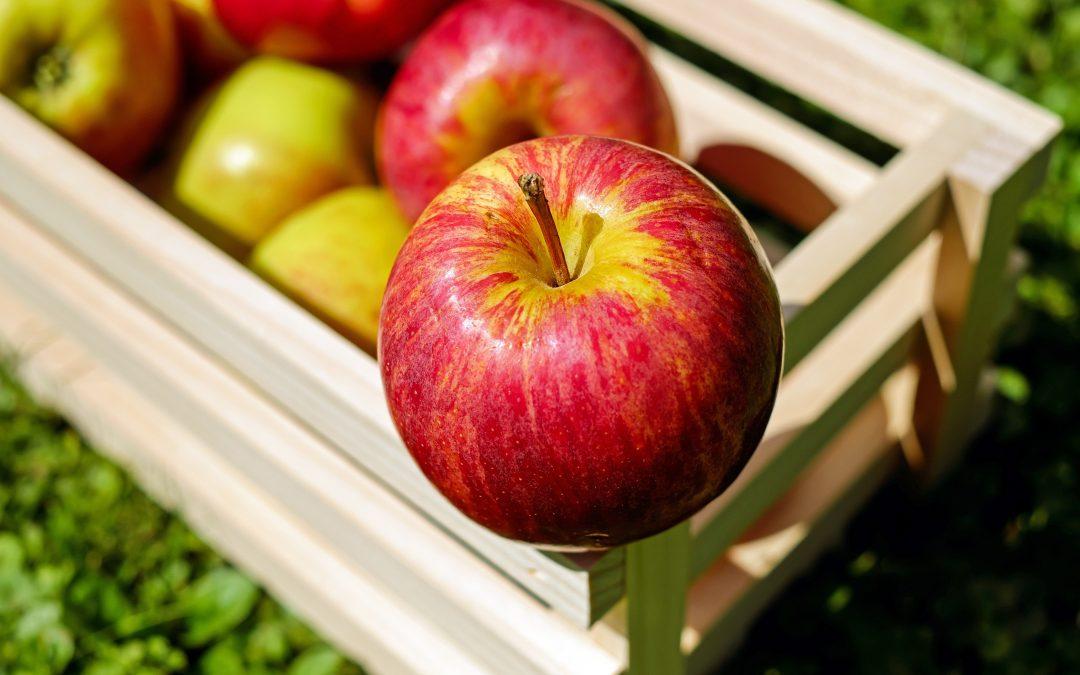 Jablečný ocet jako pomocník při bolestech kloubů